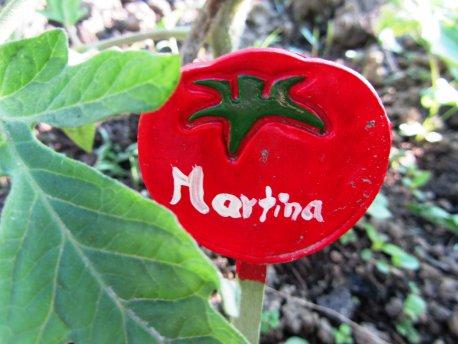Tomate Martina, Pflanzenmarkierung, Tomatenmarkierung