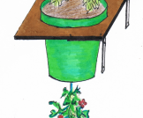 Pflanzregal, Topfpflanze, kleiner Raum Pflanzen Balkon diy
